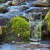 drinking water Himalayan water